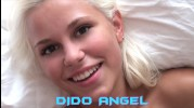 Dido Angel - WUNF 4